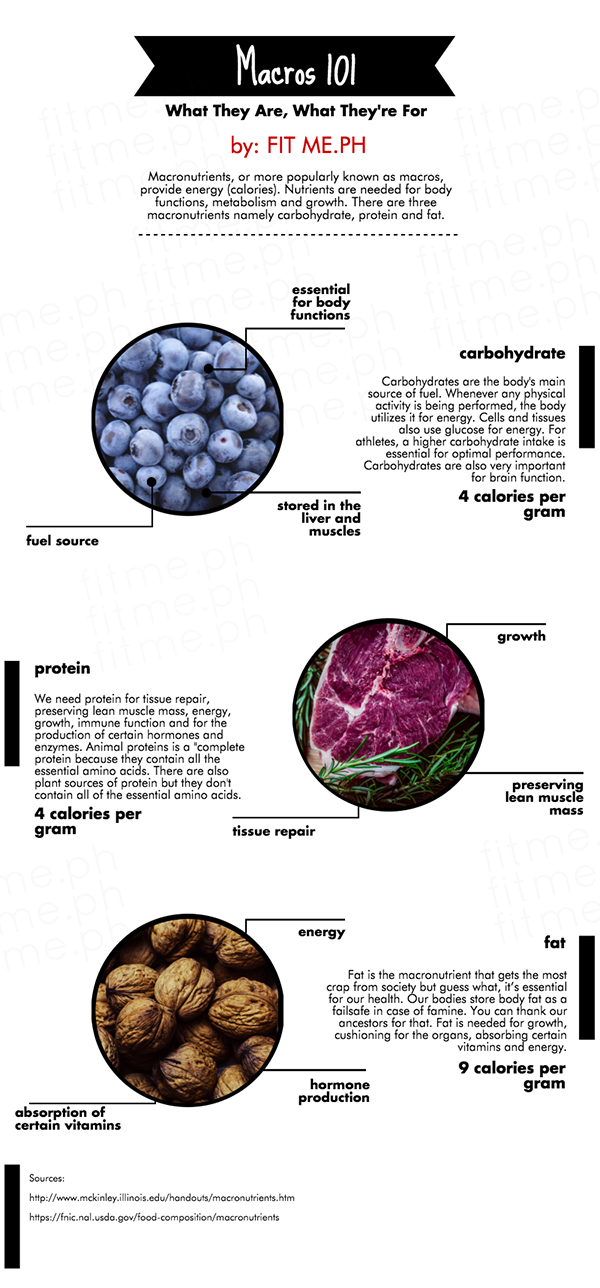 what are macros infographic